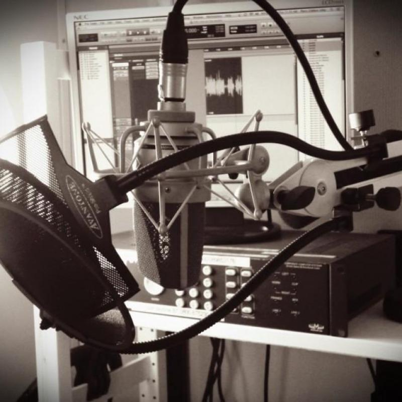 BirdBoxVox: Piers Gibbon's Studio (with overnight accommodation) - Home Studio in France